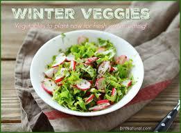 winter vegetables to start now for fresh eating all winter long
