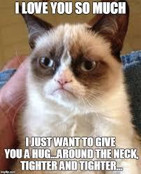 Love You So Much Meme - grumpy cat meme imgflip