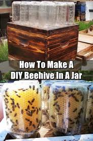How To Get Rid Of A Beehive In Your Backyard Diy Beehive In A Jar Backyard Honey With This Easy Project Love
