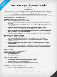 Examples Of Resumes Skills by Insurance Agent Resume Sample Resume Companion