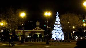 splendi lights annual tree lighting lottery