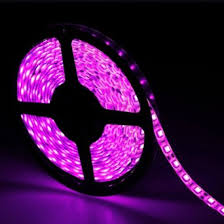 12 volt led lights waterproof pink flexible strip light indoor home deco lights 12v led string