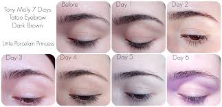 Eyebrow Tattoo Before And After Little Porcelain Princess Review Tony Moly 7 Days Tatoo Eyebrow
