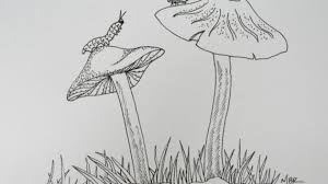 drawings of nature easy sketch drawings of nature knitting