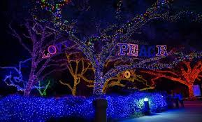 zoo lights houston prices zoo lights light up the houston zoo this holiday season