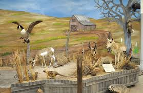 exhibits a mural painted by joye watson covers the wall behind a playa lake in the wildlife area