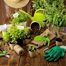 Kitchen Herb Garden Kit by Kitchen Herb Garden Start An Herb Garden On Your Kitchen