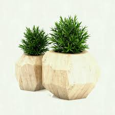 home decor sydney plants remarkable green round indoor planters for trees fearsome on