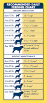 boxer dog growth chart life protection formula dry dog food healthy weight chicken