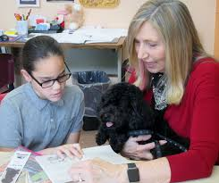 new york therapy animals excellence through education