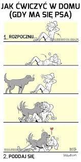 si e psa jak ćwiczyć w domu gdy ma się psa obrazki jeja pl