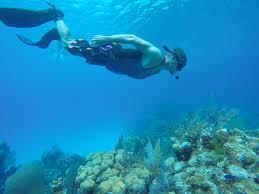 Mississippi snorkeling images Noah van hartesveldt mississippi state university jpg