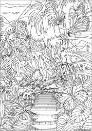 butterflies garden favoreads coloring club