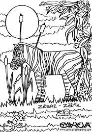 coloriage zèbre à colorier dessin à imprimer coloriage animaux