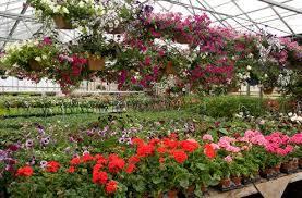 waukesha floral waukesha floral greenhouse wedding flowers corporate events