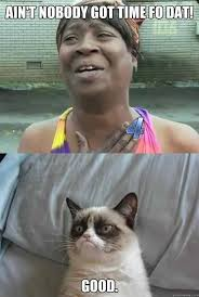Meme Generator Sweet Brown - ain t nobody got time for that grumpy cat the cat of my dreams