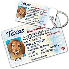pet supplies driver license custom tags for pets 2