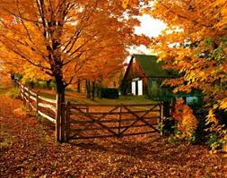 images of thanksgiving in vermont wallpaper sc