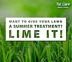want to give your lawn a summer treatment lime it turf care want to give your lawn a summer treatment lime it turf care supply corporation