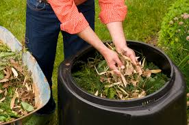 Backyard Composter Tips For Composting Success Metro