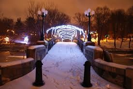 albany s own winter discover albany