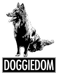 making your own dog food u2013 basic principles of raw feeding doggiedom