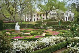 Botanical Gardens Houston What To See In Houston Museums Parks Architecture Flower