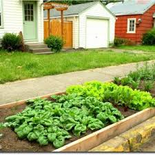 layout of small vegetable garden new small vegetable garden ideas
