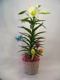 easter lily on pinterest lilies and flower arrangements learn more
