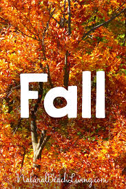 fall printables for