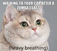 Make Your Own Cat Meme - zumba class instagram theory pinterest
