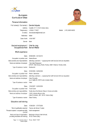 Professional Resume Template Word 2010 Free Resume Templates Word 2010 Image Collections Templates