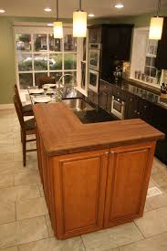 Rta Cabinets Virginia Rta Cabinets Kitchen Farmhouse With Ceiling Lighting Double Hung