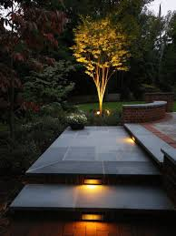 Landscape Lighting Ideas Trees 25 Best Landscape Lighting Ideas And Designs For 2018
