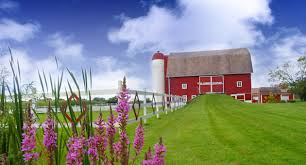 little red barn of nunica grand haven