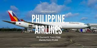 curriculum vitae sle pdf philippines airlines 23 best travel philippines promo images on pinterest