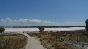 Pink Lake Dimboola Pink Lake Eat Code See