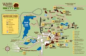 Prairies In World Map by Wildlife Prairie Park U2013 Kaci U0027s Places To Play In Peoria Enjoy Peoria