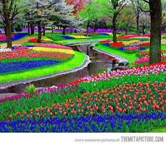 flower places one of the most beautiful places in the world the meta picture