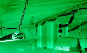 gator green led grow room work light review