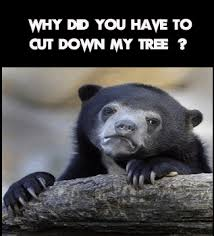 Sad Bear Meme - 100 best save trees slogans posters and memes