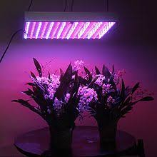 grow light wikipedia