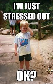 Stressed Out Memes - i m just stressed out ok regretful toddler quickmeme