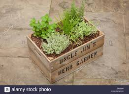 Personalized Wooden Boxes Uncle Jim U0027s Herb Garden Personalized Wooden Box Filled With Earth