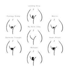 male pubic hair shapes bikini wax menu esti waxing pinterest cosmetology ingrown