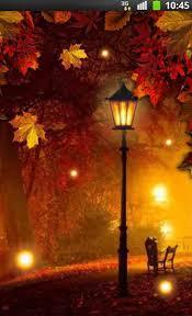 imagenes animadas de otoño descargar autumn fireflies para android gratis el fondo de pantalla