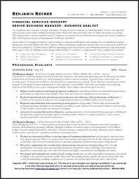 sle resume for business analyst profile resumes sle resume professional summary