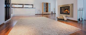 carpet cleaning services professional carpet systems