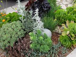 34 best curbside parkway landscaping images on pinterest front