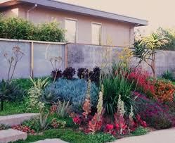 California Backyard Very Colorful Drought Resistant Landscape California Drought